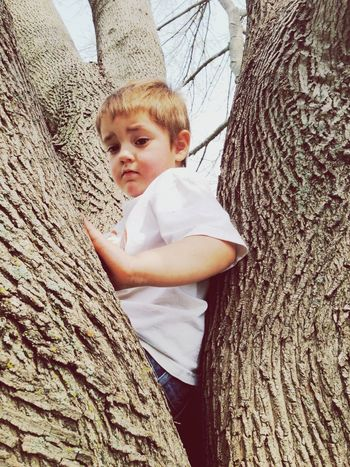 Looking To The Other Side Portrait Of Innocence Hugging A Tree Portrait Of A Toddler