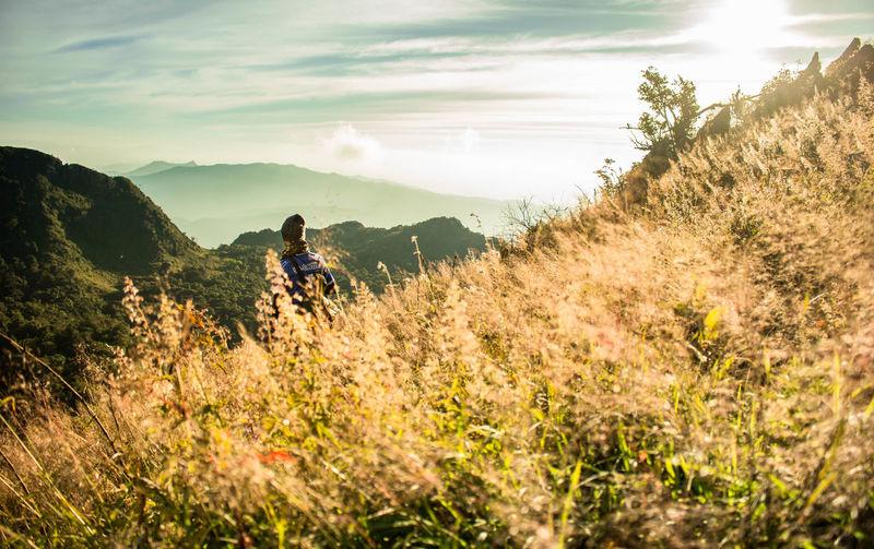 Man amidst plants on mountain against sky