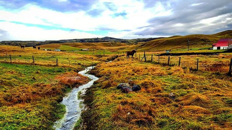 South Iceland :) Whyiceland Loving_places Wanderlust Wheniniceland