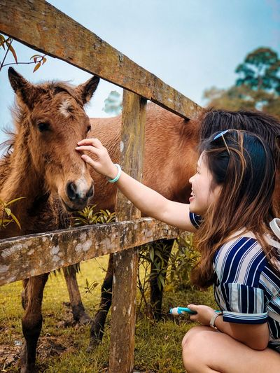 Young woman stroking pony in farm