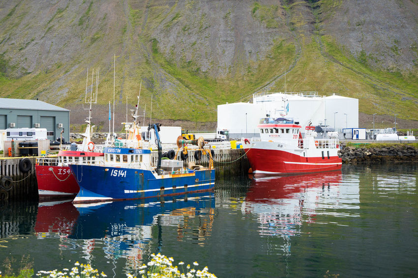 Iceland Iceland Trip Iceland Memories Islanda Nord North Iceland West Fjords West Fishing Industry Anchored Built Structure Building Exterior Fishing Boat Port No People Reflection Nautical Vessel Water Transportation Sea Day Nature Harbor Architecture Waterfront