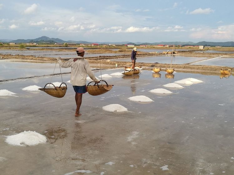 Salt worker Walking Occupation Water Outdoors Day Adult Men Sea Only Men Salt Basin Standing Sky Working Adults Only People Salt Flat Saltmine