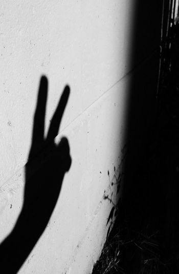 Peace ✌ Peace Shadow Hands Playing With The Light Hand Shadow
