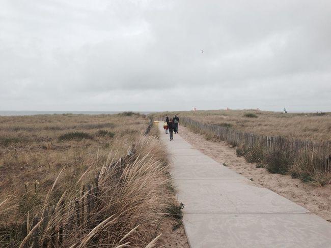 Ocean in the Netherlands ^^ The Moment - 2015 EyeEm Awards The Traveler - 2015 EyeEm Awards OpenEdit AWARD Ocean Green Grass Walk This Way The Street Photographer -2015 Eyem Awards