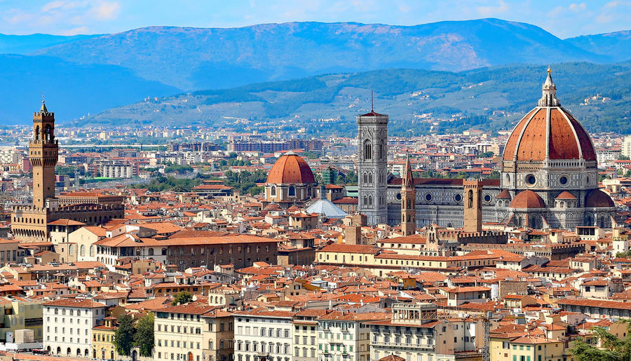 perfect Panorama of the city of FLORENCE in Italy #Firenze #Florence #florence #italia #italy Duomo Duomo Di Firenze Firenze Florence Cathedral Roof Brunelleschi Brunelleschi's Dome City Cityscape Dome Domestic Animals Domestic Cat Florence High Angle View Italy Mountain Palazzo Vecchio Panorma Perfect Travel Destinations Vibrant Color