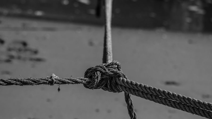 Close-up of tied ropes