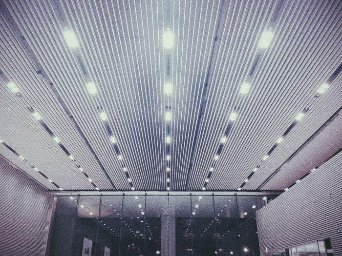 Lines Architecture