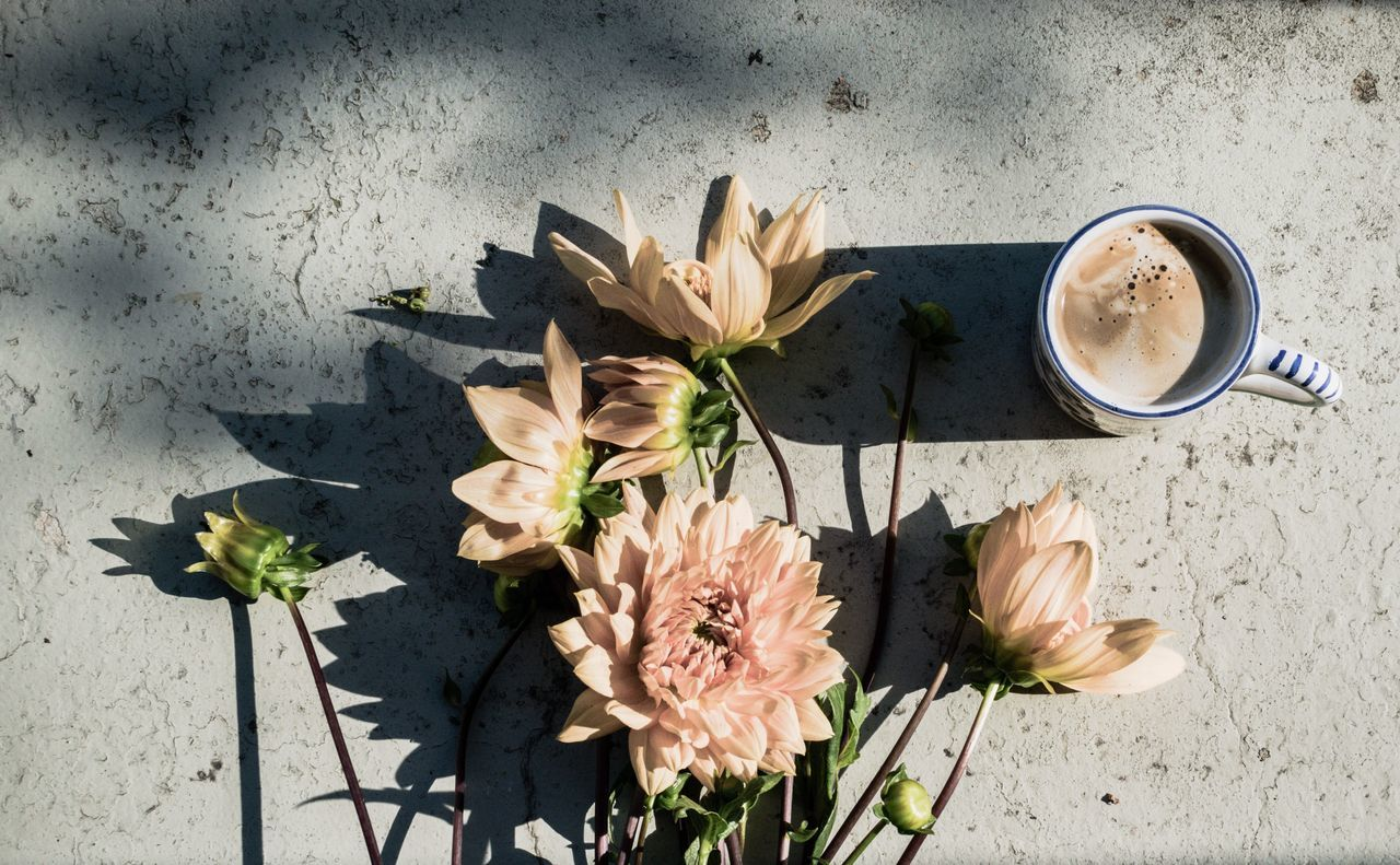 Directly above shot of flowers and coffee on table