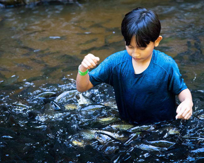 High angle view of boy standing in water with school of fish