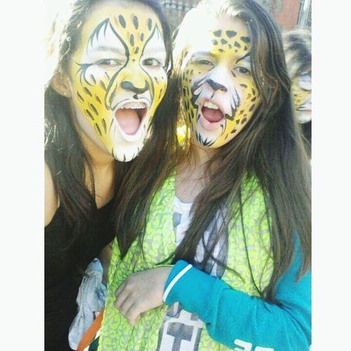 Orlando Cheetah Time  Disney