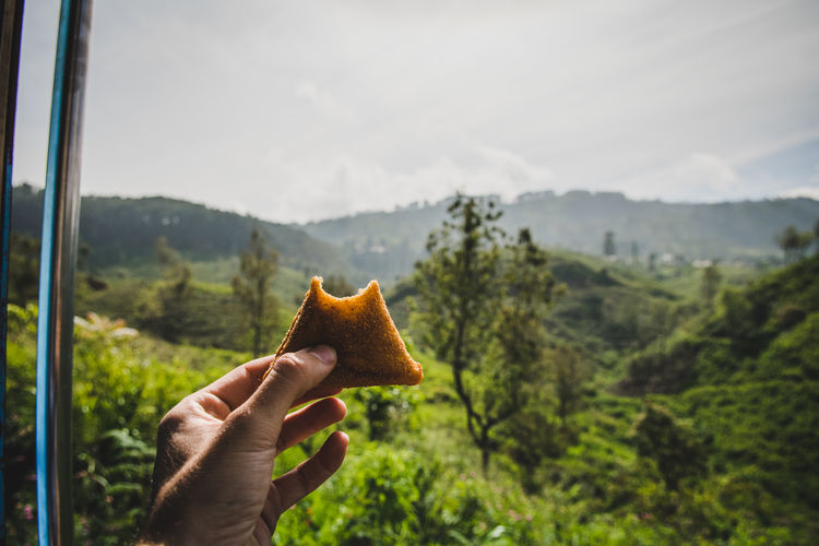 Outdoors Finger Body Part Beauty In Nature Leisure Activity Landscape Lifestyles Personal Perspective Plant Forest Mountain Nature Tree Day Unrecognizable Person Real People Focus On Foreground Holding One Person Human Body Part Hand Human Hand Samosa Close-up Snack Indian Food Asian Food