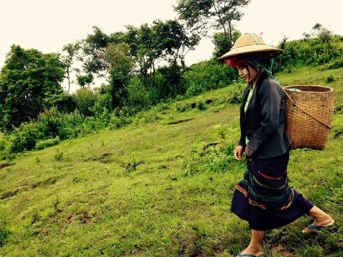 Indigohilltribe Hilltribe Burma Trekking EyeEmNewHere First Eyeem Photo Nature