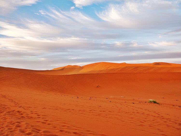 Red desert Namibia Landscape Namibia Desert Africa Deadvlei Dunes Reddesert Namib Desert Namibia EyeEm Selects Sand Dune Mountain Desert Arid Climate Sunset Full Length Adventure Grazing Sand Horizon