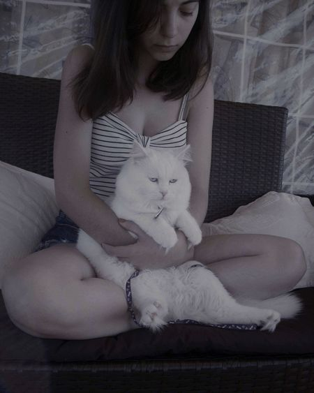 🐈♥️ Pets