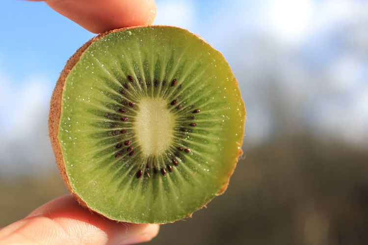 Eat More Fruit Eating Healthy Food Food And Drink Freshness Fruit Fruit Photography Fruits Green Green Color Green Green Green!  Health Healthy Healthy Eating Healthy Food Healthy Lifestyle Human Body Part Kiwi Kiwi - Fruit Kiwifruit Kiwis Natural Vitamin Vitamin C Vitamins