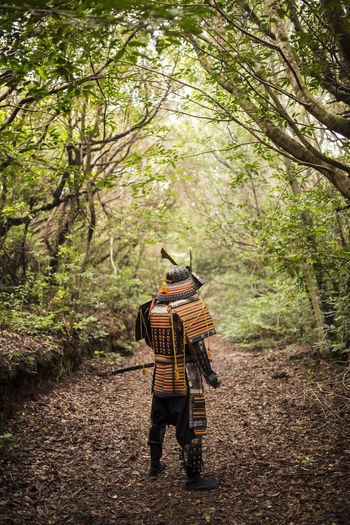 Rear view of man in costume standing amidst trees at forest