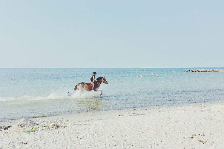 Sea Beach Horizon Over Water Water Sand Horse Ride Riding Pony Deutsches Reitpony Clear Sky Nature Scenics Real People Strand Ausritt Sky Outdoors Leisure Activity Day Lifestyles Ostsee Ostseeküste Reiten Reitsport Sommergefühle Mix Yourself A Good Time