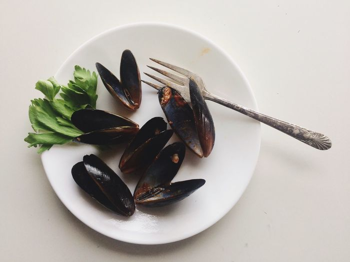 I ate all the mussels. Food And Drink Plate Food Still Life Freshness No People Fork Indoors  Healthy Eating Directly Above Ready-to-eat Indulgence Serving Size Close-up Studio Shot White Background Seafood Flatlay Flatlay Mussels Clam Appetizer Hors D'oeuvres Seafood Freshness Flat Lay
