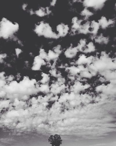 Walking alone Sky Clouds Summer Ends Autumn Begins IPhoneography Morning Walk Nature EyeEm Nature Lover Blackandwhite
