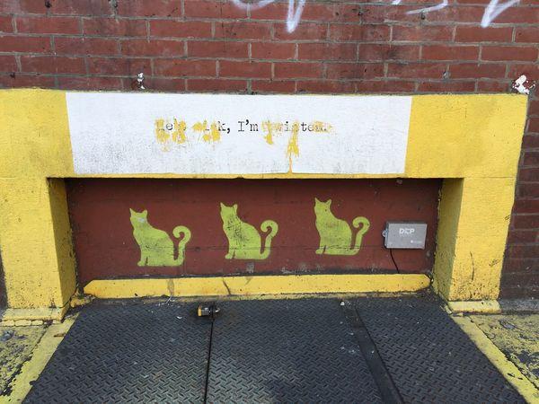 NYC NYC Photography Hells Kitchen  Hellskitchen Kitty Streetart
