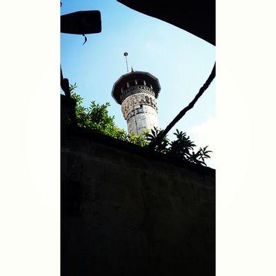 Antakya Antaki Antioch Mosque antakyayenicami agac tree minaret olderthan1650 tahmini 16.yy hatay