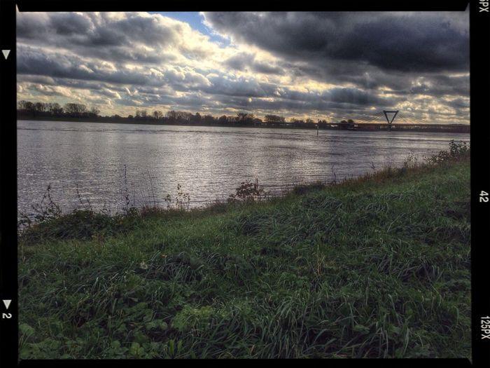 Es hat tatsächlich so viel geregnet, dass der Rhein Hochwasser hat.