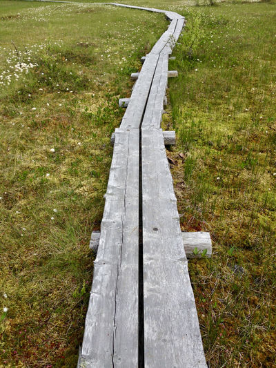 Pitkospuut Swamp Absence Bench Day Diminishing Perspective Direction Empty Field Footpath Grass Green Color Growth High Angle View Land Landscape Nature No People Outdoors Park Bench Plant The Way Forward Tranquility Wood Wood - Material