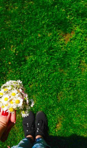 Flowers 😚 ♡♡ Park