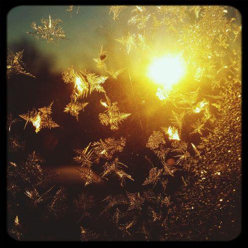 Sunrise and Jack Frost meet Enjoying Life Sunrise Colors