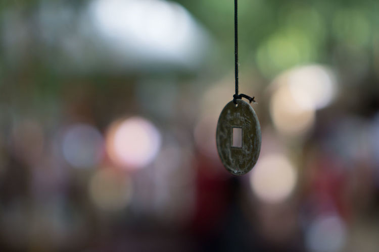 Hanging Insect