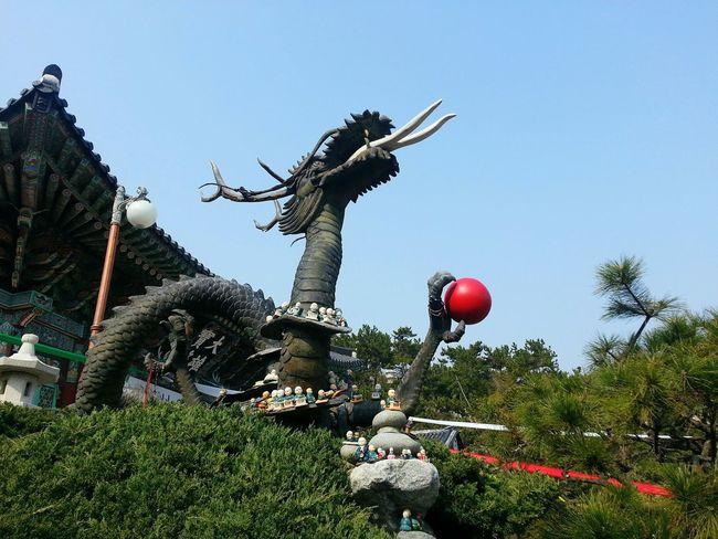 Dragon Oriental Style Oriental Temple Korean Temple Busan,Korea Dragonball Oriental Blue Sky ASIA