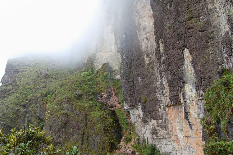Mount Roraima - Venezuela Canaima Table Mountain Venezuela Cliff Fog Rock Formation Roraima Tepuy