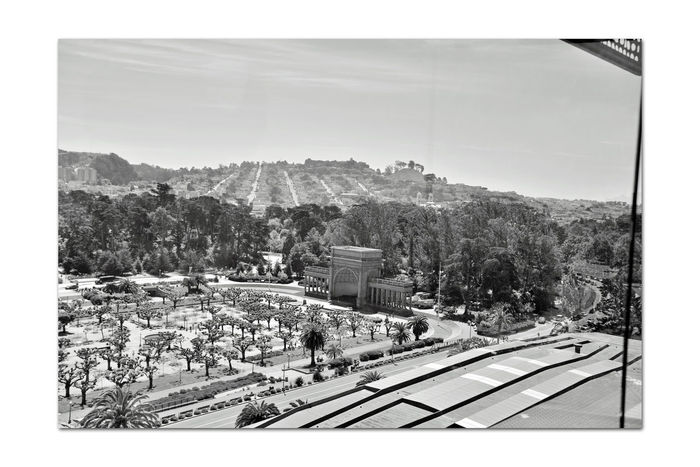 DeYoung Museum _ Observation Tower 12 San Francisco CA🇺🇸 Golden Gate Park 144 Ft. Observation Tower 8th Floor DeYoung Museum Spreckels Temple Of Music Bandshell Trees Bnw_friday_eyeemchallenge Fine Arts Museum View From DeYoung Open -Air Plaza Parkview Music Concourse Pollarded Trees Hills Of San Francisco Avenues Monochrome_Photography Monochrome Black & White Black & White Photography Black And White Black And White Collection  Museum Roof