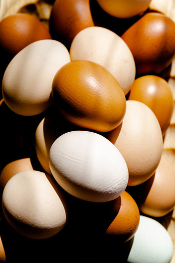 Brown tones eggs in strong sunlight opaque full frame background Chicken Opaque Abundance Backgrounds Brown Close-up Eco Food Egg Food Freshness Full Frame Happy Easter Healthy Eating Hen High Angle View Home Grown Food Large Group Of Objects Light And Shadows Organic Raw Food Selective Focus Village Vulnerability  Wellbeing White Color
