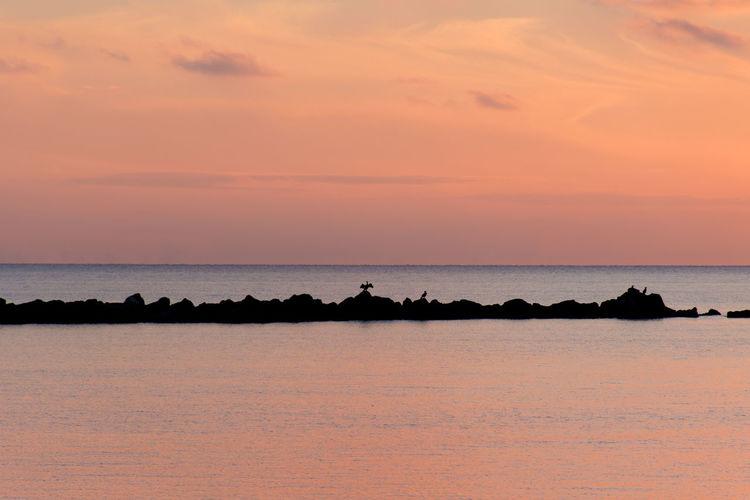 Romantic sunset Sunset Romantic Sky Romantic Santa Marinella Sunset Silhouette EyeEm Selects Dronephotography Djimavicair EyeEm Dronepilot Sunset_collection Seascape Inflight Uav Dji Red