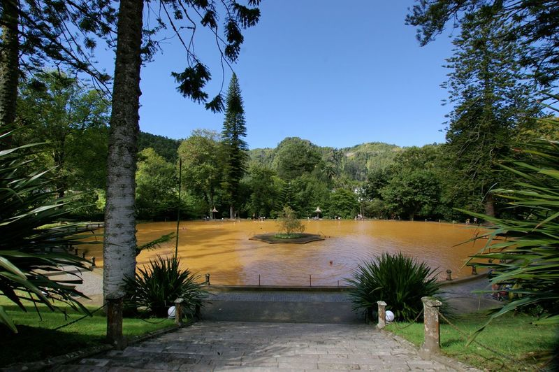 Terra Nostra Garden - Sao Miguel - Azores - The rusty colour of the water in the swimming pool is natural. Water is 40 degrees Celsius naturally, too. Water comes from a river nearby. Azores Azores Islands Azores, S. Miguel Azores Beauty Day No People Terra Nostra Park Sao Miguel Sao Miguel- Azores Tree Plant Pool Water Waterfront Swimming Pool Healthy Lifestyle Healthcare And Medicine Health Wellbeing Wellness Clear Sky Idyllic Footpath Outdoors Blue Green Color Sky