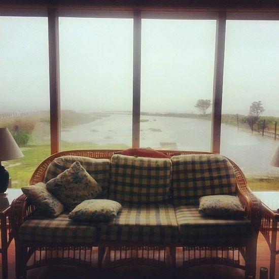 Goodmorning from Chincoteague ! YaaaasRandomBeachAdventures FeelGoodVibes JustWhatINeeded