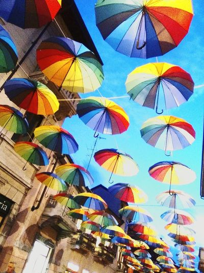 Multi Colored Close-up Umbrella Gallarate Evening Low Angle View Outdoors