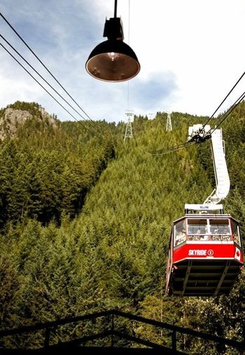 Skyride Lift Upthere Pinetrees Mountains Peak Nature