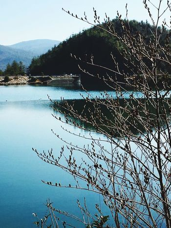 Wonder of Nature : The Image of the Mountain Reflected in Kurose Artificial Lake. Beauty In Nature Outdoors light blue sky mountain reflection clear water shrub bud. Taken in Higashi-Hiroshima , Japan on Jan. 28, 2017. (Submitted on March 21, 2017)