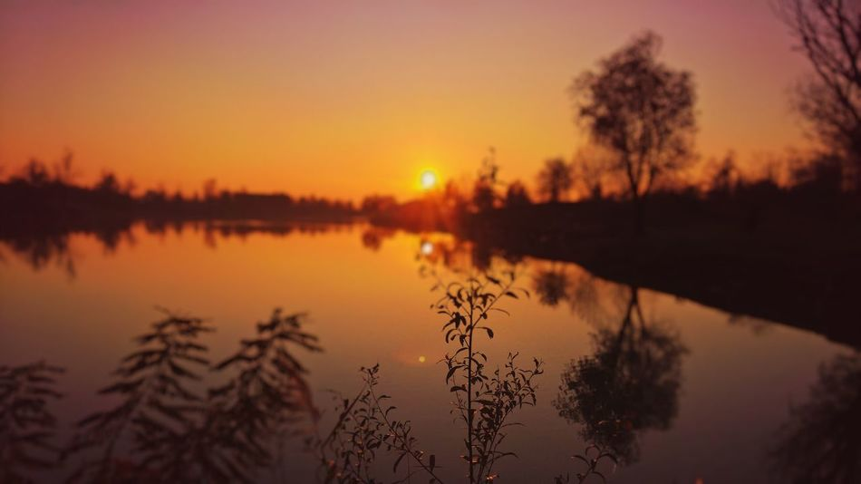 Beauty In Nature Lake Nature No People Orange Color Outdoors Reflection Scenics Silhouette Sky Sun Sunset Tranquil Scene Tranquility Tree Water