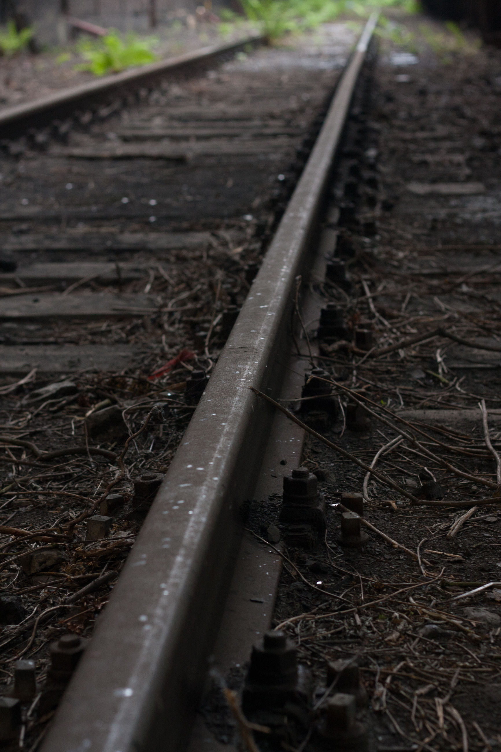 railroad track, rail transportation, transportation, metal, no people, day, close-up, outdoors, nature