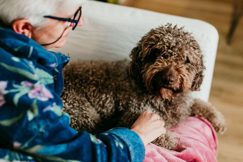 High angle view of senior woman with dog on sofa at home