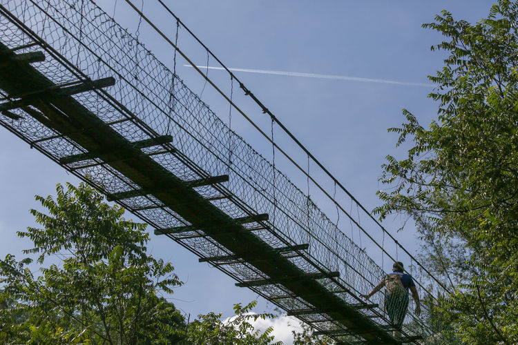 Metal Transportation Power Supply Bridge - Man Made Structure Built Structure Architecture Bridge No People Fence Outdoors Connection Nature Tree Low Angle View Plant Day Barrier Boundary Sky Growth Safety