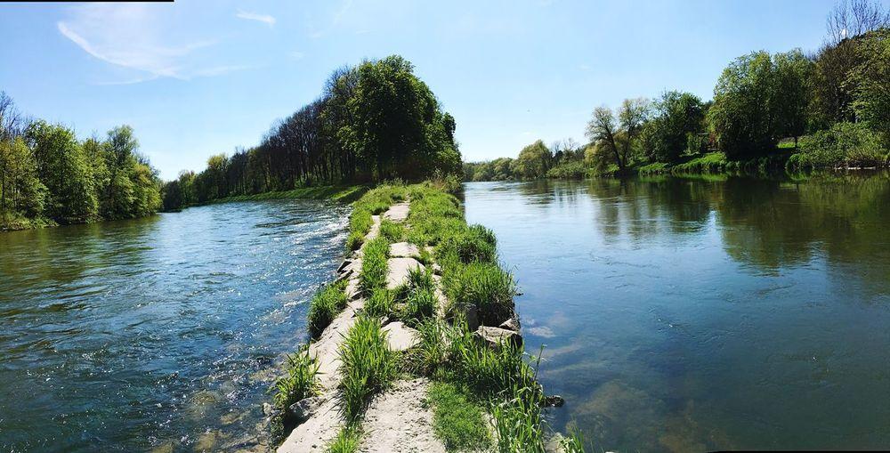 Donau-Iller-Spitze 🌊