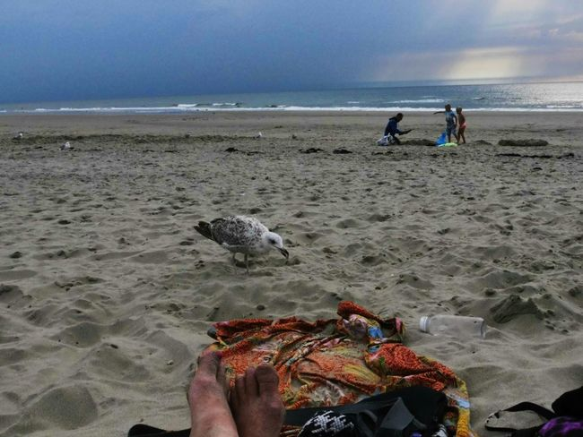 Being A Beach Bum Relaxing Sea Holiday POV Beach Life Is A Beach Changing Weather