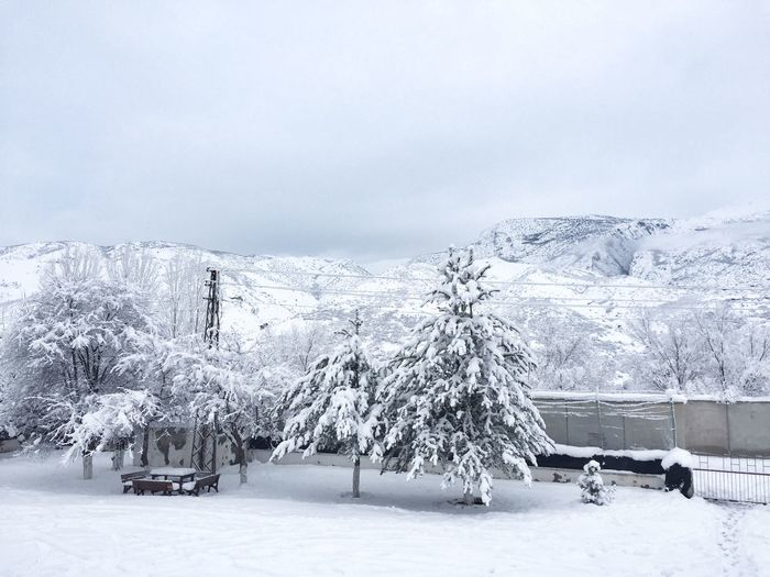 Erzincan Turkey Snow Winter Cold Temperature Nature White Color Beauty In Nature Weather Day First Eyeem Photo