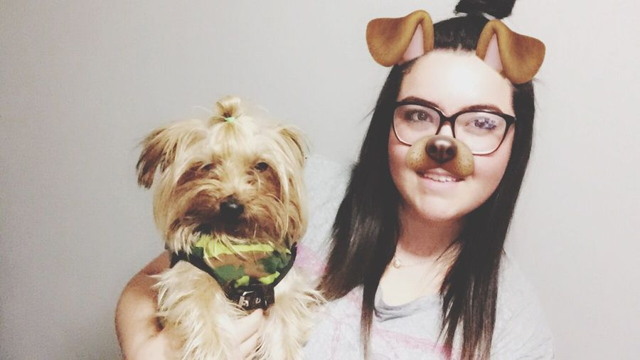 Dog Pets Eyeglasses  Looking At Camera Domestic Animals Real People One Animal One Person Glasses Holding Best Dog Yorkshire