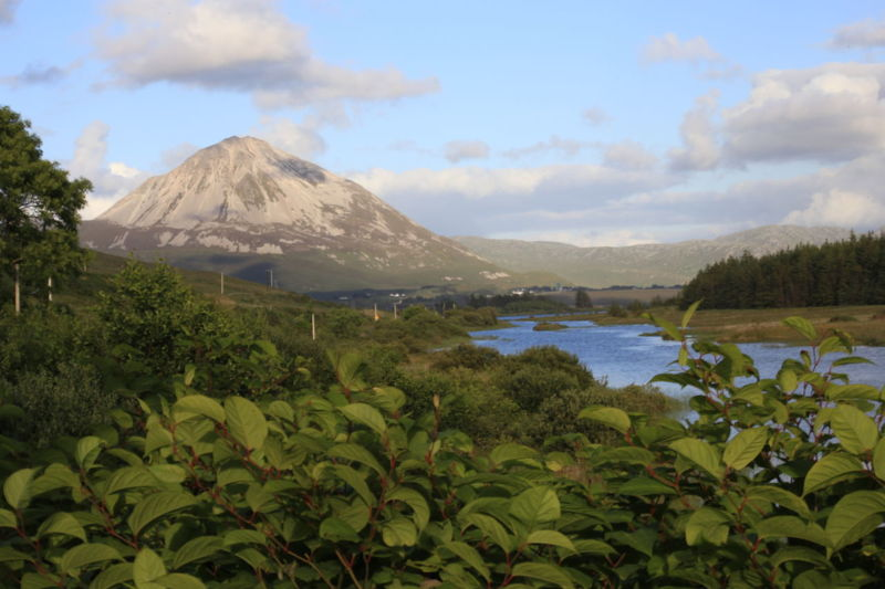 Mount Errigal Beauty In Nature Day Growth Lake Mount Errigal. Ireland. Mountain Nature No People Outdoors Plant Scenics Sky Volcano