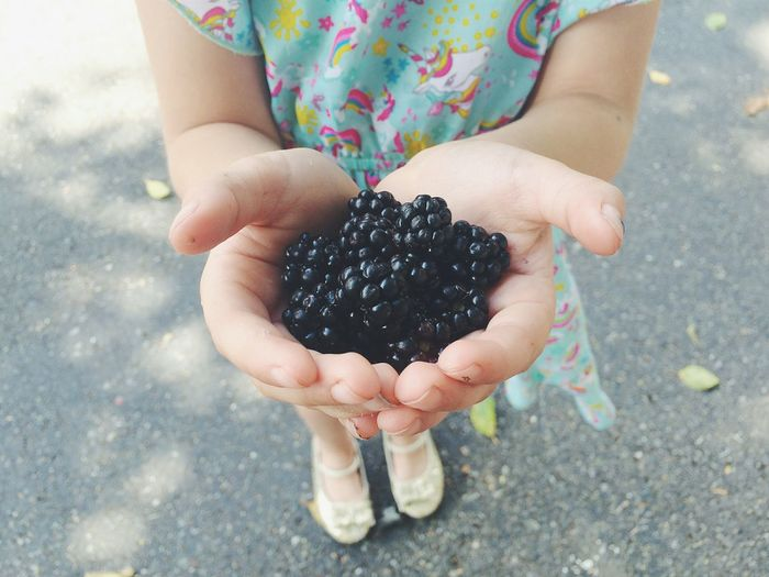 Close-up of girl holding blackberries